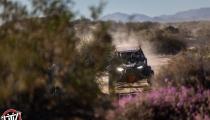 San Felipe Desert Mayhem 175