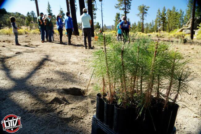 Yamaha Employees Donate Time for Public Lands Rehabilitation Projects