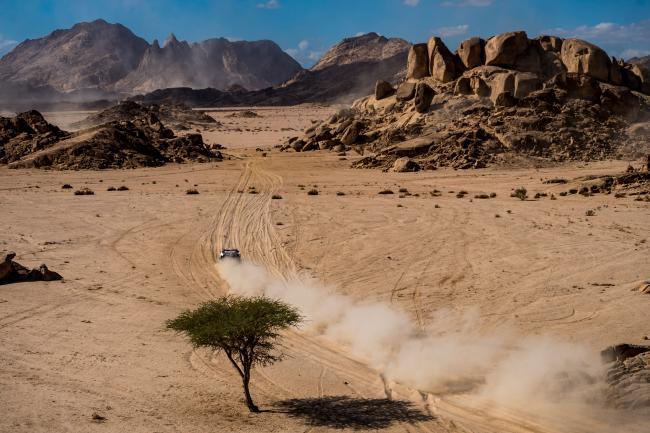 2020 Dakar Rally Stage 3 Neom Cyril Despres