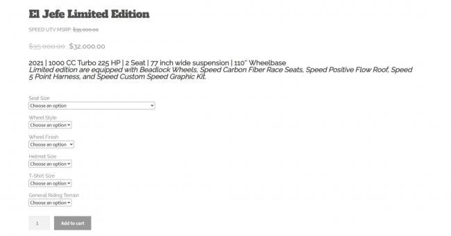 robby gordon speed sxs 11